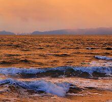 Salish Sea by TerrillWelch