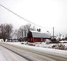 Rural Winter by KathrynSylor