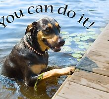 You Can Do It - dog climbing out of water by laurenmacphotog