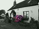 The Old Cottage by trish725