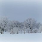 Lots Of Frost Covered Trees by Linda Miller Gesualdo