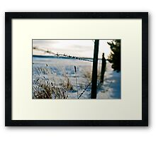Barbed Wire Fence Framed Print