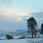 Winter Comes to Big Flat by © Betty E Duncan ~ Blue Mountain Blessings Photography
