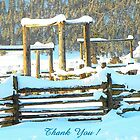 The Snow Corral by © Betty E Duncan ~ Blue Mountain Blessings Photography