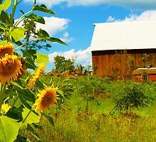 Sunny Hill Farm by A. Kakuk