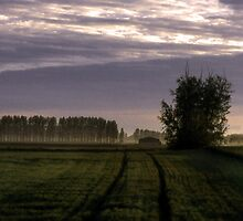 english coutryside eary morning by JohnHDodds