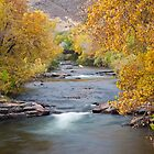 Fall at Clear Creek by Teresa Smith