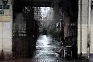 "Beijing Alley by Christine ""Xine"" Segalas"