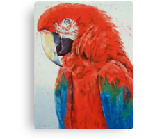 Crimson Macaw Canvas Print