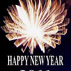 HAPPY NEW YEAR - 2011 by Dawn B Davies-McIninch