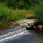 Scamander town water by UncaDeej