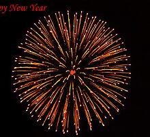 Happy New Year 2011 by Ólafur Már Sigurðsson