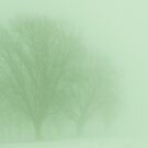 A Foggy Ending by lorilee