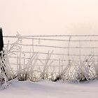 Frosty Fenceline by Chris Pultz