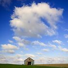 Leaning Door Barn (WIDE) by Chris Pultz