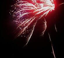 Happy New Year! by Stephanie Owen