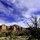 Winter in Sedona by Charmiene Maxwell-batten