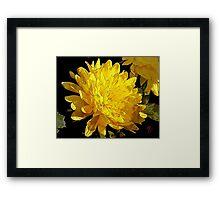 Yellow Creation Framed Print