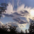 Crazy July Clouds by vigor