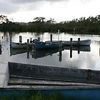 Old Fishing Boats at Tuncurry, NSW by aussiebushstick