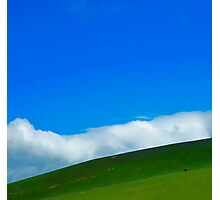 one cow hill Photographic Print