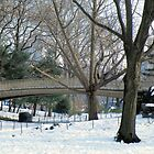 Happy New Year Central Park by joan warburton