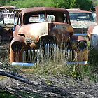 Peak Hill car wrecks - old Holden by DashTravels