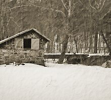 Winter Barn by Sally Kady