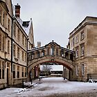 Hertford Bridge, Oxford by Karen Martin IPA