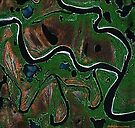 """""""Bend in the River""""  by Patrice Baldwin"""