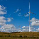 Windy Hill by Heath Carney
