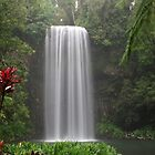 Millaa Milla Falls - QLD - Australia by Chris Sanchez