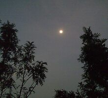 Come very soon, Punisher of Moon. by Akash Puthraya