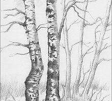 BIRCH TREE by RainbowArt