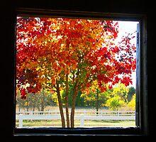 Through The Open Door by Karen  Rubeiz