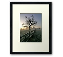 Over the fence No2 Framed Print