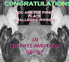 Cats and Dogs Challenge Banner by Charldia