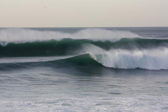Wave 6308 by João Castro