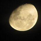 Moon Craters by Jen Bullen