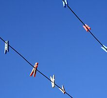 Pegs on the Line by Mark Jones