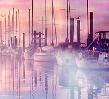 Mist on the Nicomekl by Carolann23