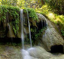 Rainforest Waterfall by Philip Alexander