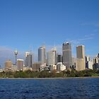 Sydney skyline by DashTravels