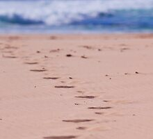 Footprints by Michelle  Wrighton