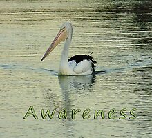 Awareness by Julia Harwood
