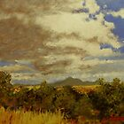 Sonoran Grassland by James Lindsay