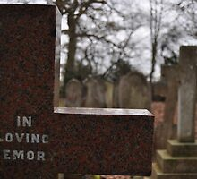 In Loving Memory by AlexWood1995