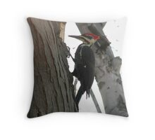 Pileated woodpecker chipping away Throw Pillow