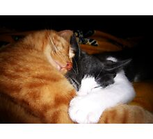 Let's Snuggle Photographic Print