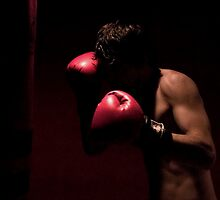 Shadow Boxer by Melissa Pinard